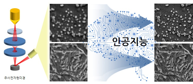 공동연구팀은 미세조직 이미지를 자동으로 판별하고 향상시키는 기술을 개발했다.[이미지=포스텍 제공]